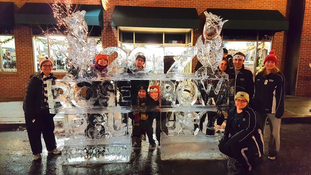 2017 Ice Sculpture on Alan Street, State College. Post-Resolution Run 5K.
